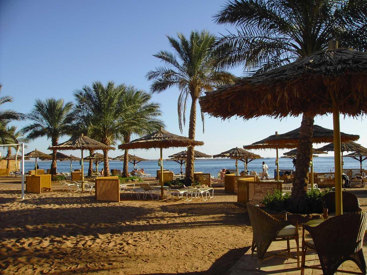 windsurfing egipt