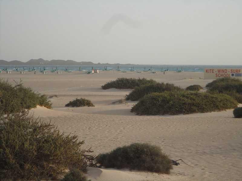 fuerteventura- Canare 17