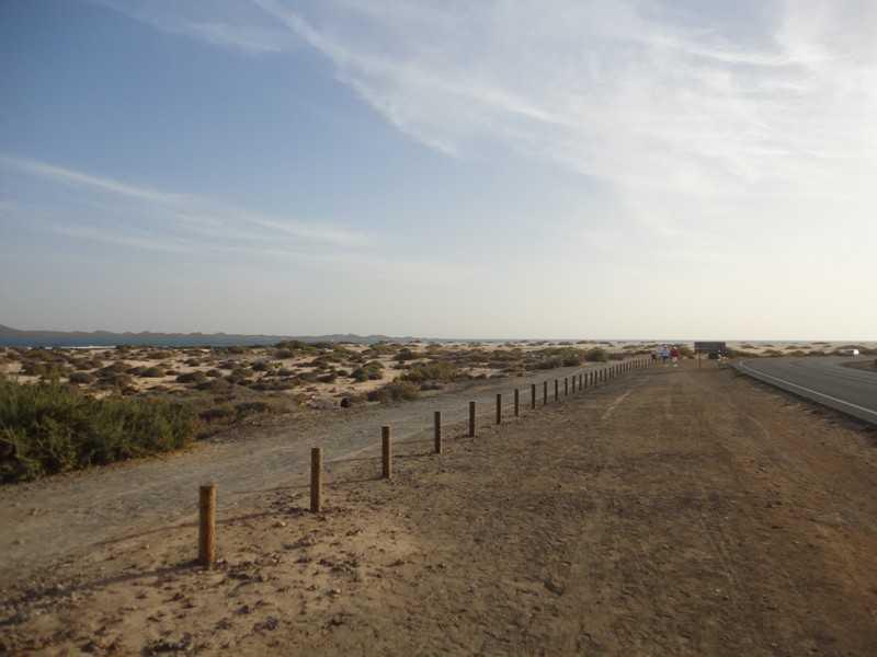 fuerteventura- Canare 31